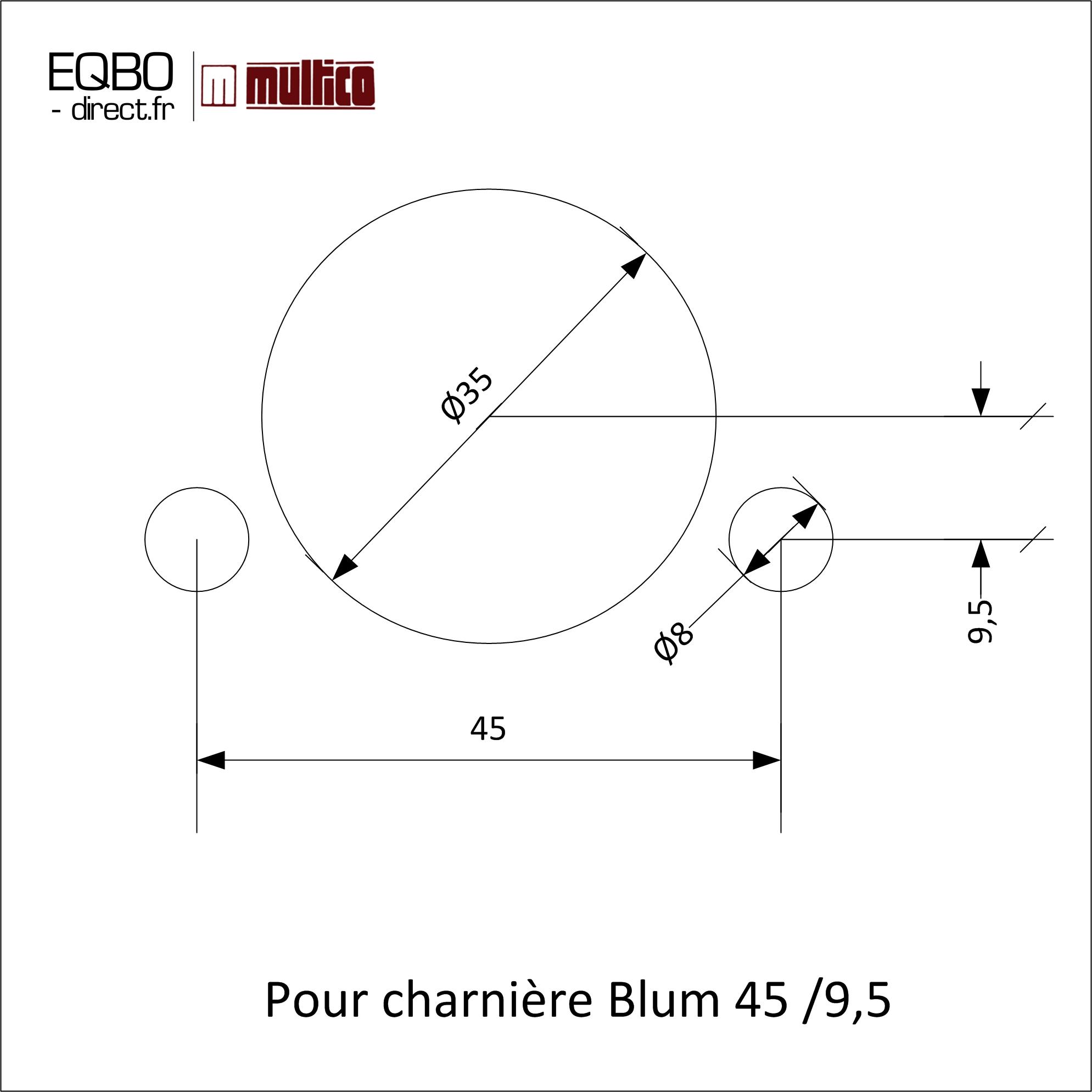 Charnière Blum